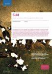 SLM-Partners
