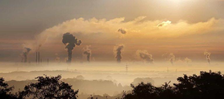 Intensive Farming Pollution