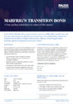 Marfrig transition bond – cover
