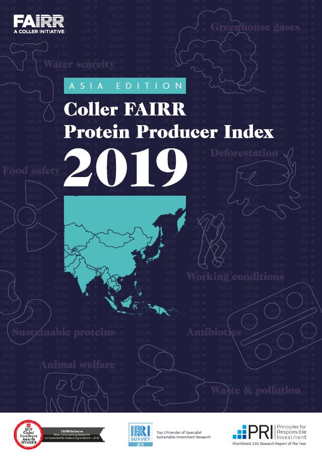 Asia Index 2019 cover
