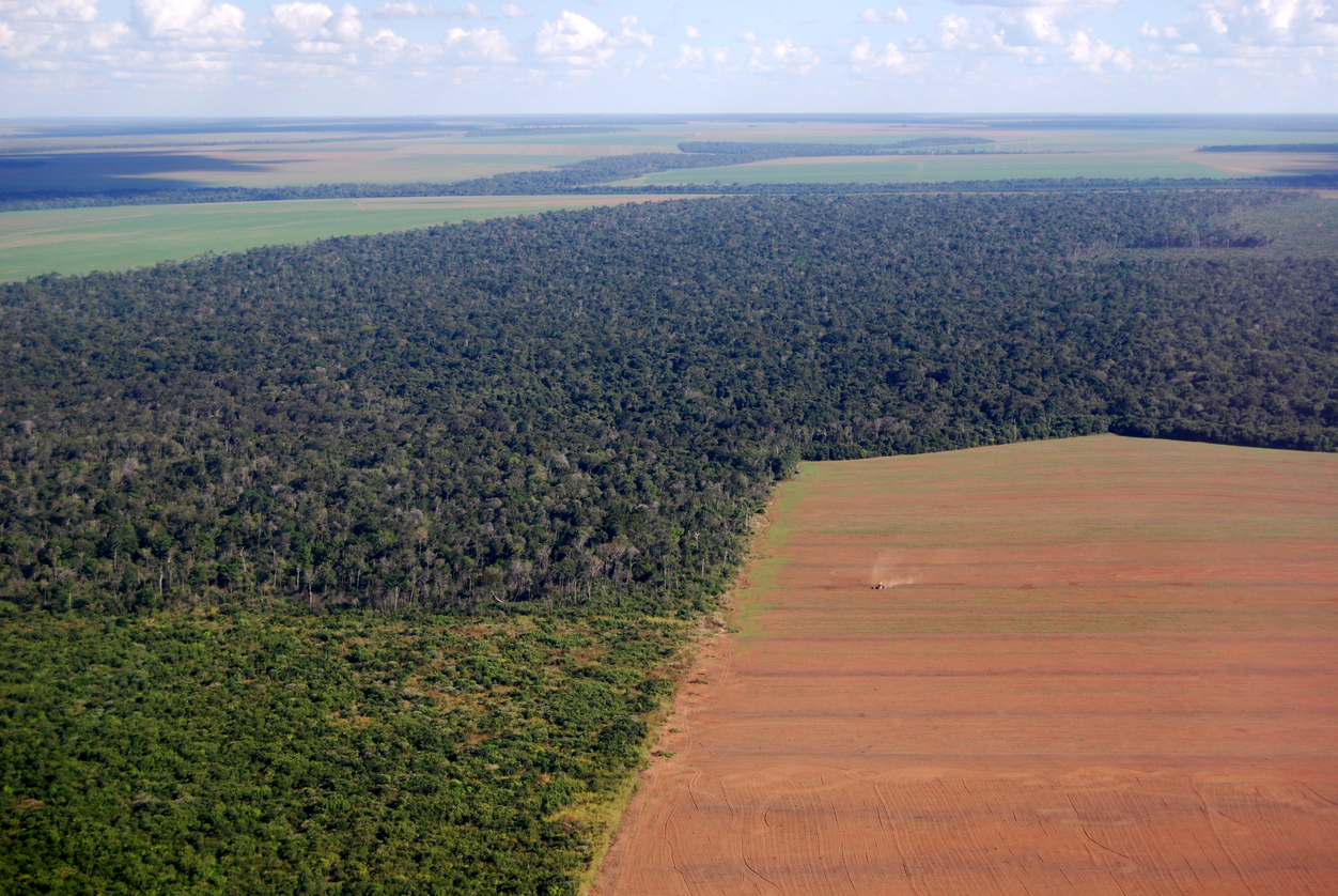 Aerial view of Amazon deforestation in Brazil