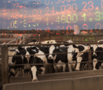 cow and finance overlay